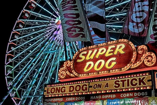 Annual Day Trip To Illinois State Fair